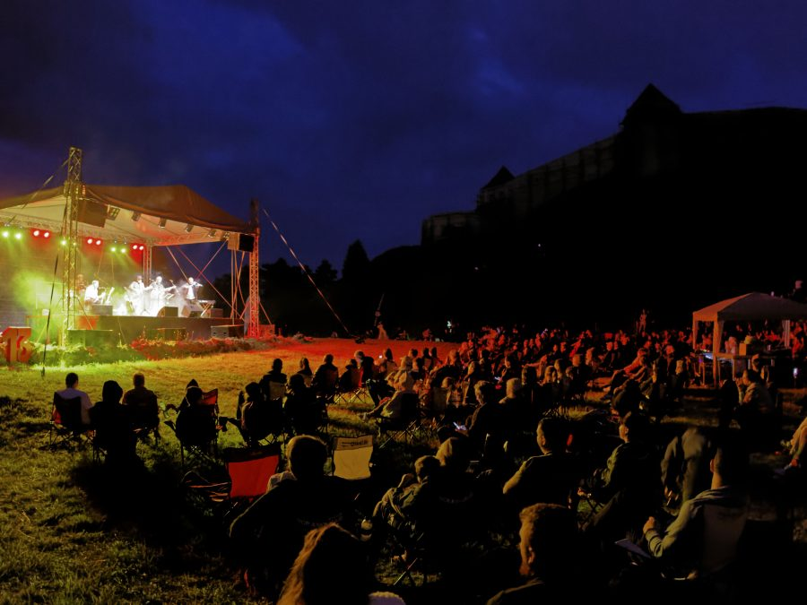 3045_20210821_concert_NicuAlifantis_foto(c)DanielSecarescu